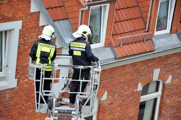 Feuermehrmänner schauen nach unten