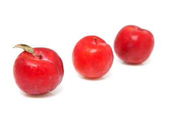 Three fresh plums over white background