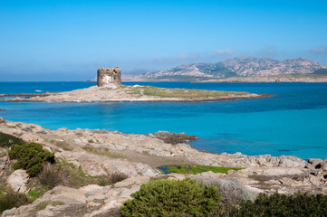 Sardinia, Italy: Capo Falcone and the spanish tower in Stintino