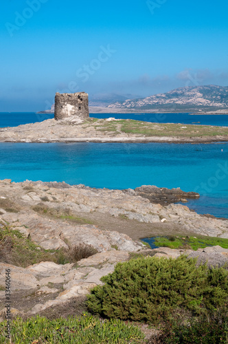 Sardinia, Italy: Capo Falcone and the spanish tower in Stintino