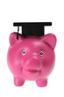 Piggy Bank with Mortar Board