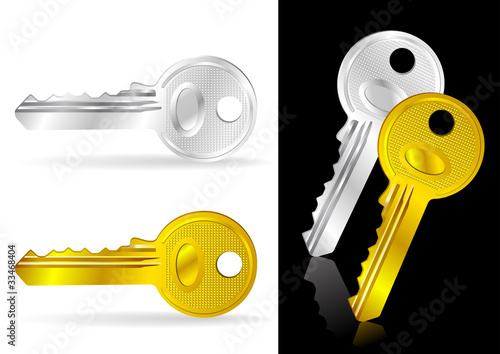 Golden and Silver Key - Vector Illustration