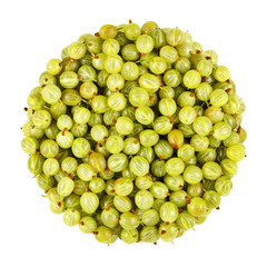 gooseberry bunch
