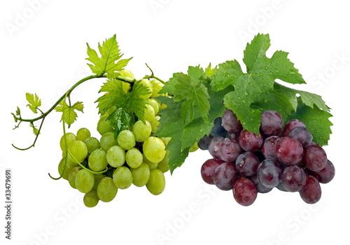 Bilder Blaue Weintrauben ~ Grüne und blaue Weintrauben Stockfotos und lizenzfreie Bilder auf