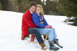 Young Couple On A Sled  In Alpine Snow Scene