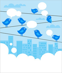Social network background with blue birds