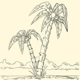 Sketch of tropical palm on island in ocean
