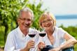 Glückliches Paar trinkt Wein am See im Sommer