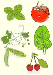 Fruit and vegetable collection, stylized
