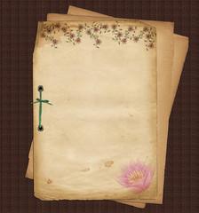 altes Briefpapier Seerose