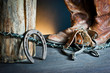 Cowboy boots,horseshoe,whip and spurs on wood
