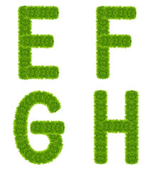 green grass letter efgh isolated