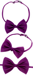 purple bow-tie