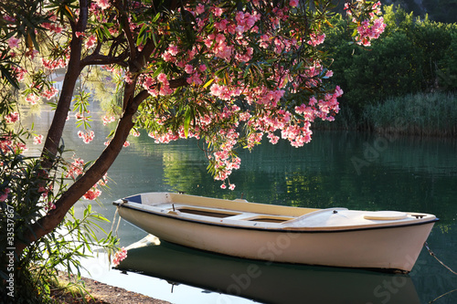 Boat on the river - 33537867