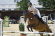 Fototapeten,reitend,frühling,springschrecken,pferd