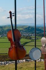 Harmonic Fields - Birkrigg Common