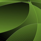 Abstract green curves background