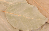 Dry aromatic bay leafs as background poster