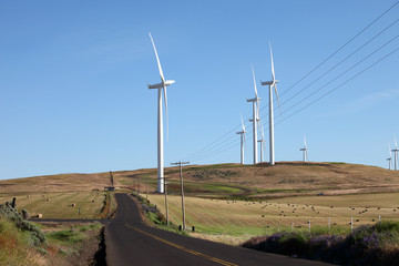 Wind energy technologies.