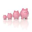Sparschweine - Wachstum