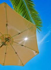 Sonne, Schirm und Palme
