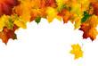 Bogenförmige Rahmung aus Herbstblättern