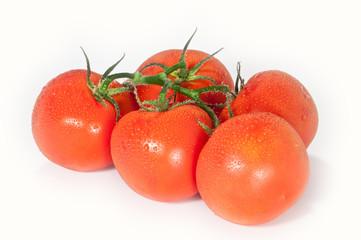 Tomaten mit Wassertropfen