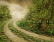 Wiejska droga przez las