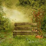 Fototapety Sad z drewnianą ławką i owocami