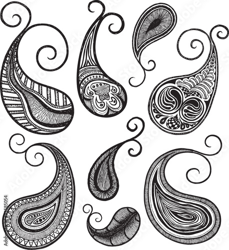 paisley illustration