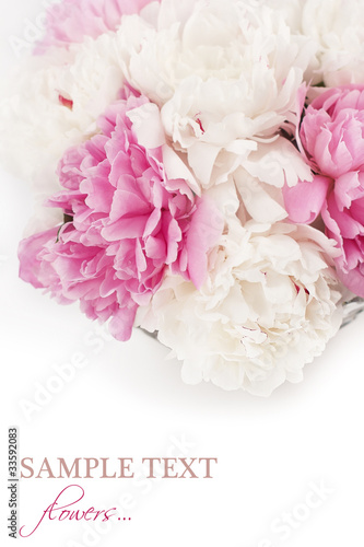 Foto op Canvas Madeliefjes Beautiful peony flowers