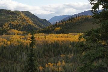 Mt. Denali Nationalpark Alaska USA