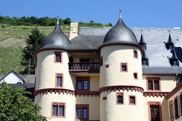 Palace of the Elector in Zell in Germany