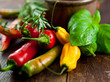 Mixed peppers and herbs on rustic background