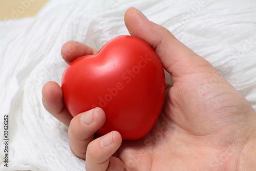 serce 2
