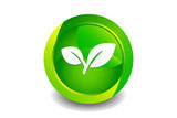Green Leaf Icon