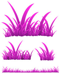 set of pink grass isolated on white background
