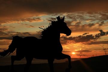 Cavallo sulla spiaggia al tramonto
