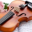 Violin mit Rose