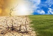 cambio climatico - 33651221