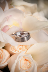 aj wedding 128