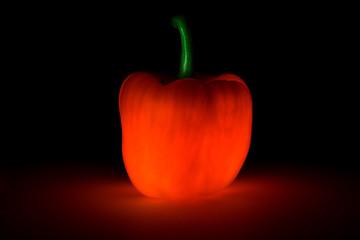 Leuchtende Paprika