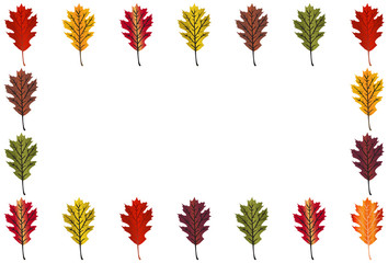 Red Oak Leaf border