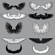 Set of heraldry wings