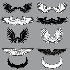 Set of heraldry wings