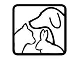 Fototapeta pies - ogon - Zwierzę domowe