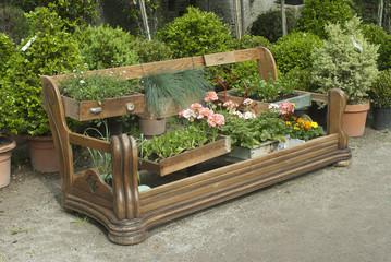 vecchio divano con piante