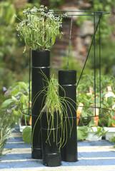 tubi con piante
