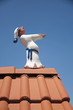 Sleepwalker walking on roof