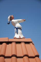 Sleepwalker walking on roof